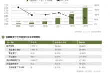 杨青丽:第三方支付的格局与中国愿景